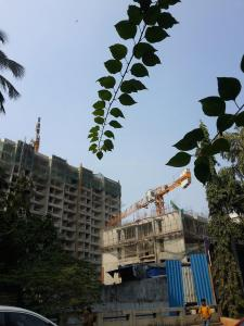 Gallery Cover Image of 1700 Sq.ft 3 BHK Apartment for buy in Vile Parle West for 75000000