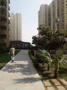 Gallery Cover Image of 1710 Sq.ft 3 BHK Apartment for rent in Paramount Emotions, Phase 2 for 15000