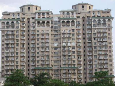Gallery Cover Image of 1450 Sq.ft 2 BHK Apartment for rent in Sector 43 for 55000