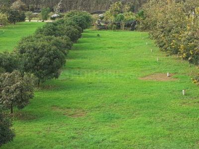 1200 Sq.ft Residential Plot for Sale in Nagarathpet, Bangalore