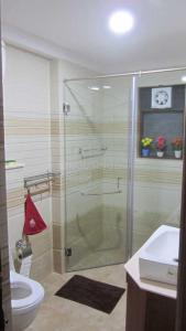 Gallery Cover Image of 1655 Sq.ft 3 BHK Apartment for rent in Jogupalya for 99000