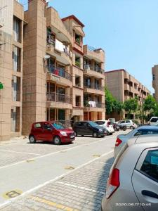 Gallery Cover Image of 1200 Sq.ft 2 BHK Apartment for rent in Century Apartments MIG Flats, Sector 100 for 13000