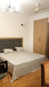 Gallery Cover Image of 505 Sq.ft 1 RK Apartment for rent in Nimbus The Golden Palms, Sector 168 for 13000