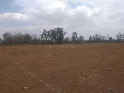 1615 Sq.ft Residential Plot for Sale in Murbad, Thane