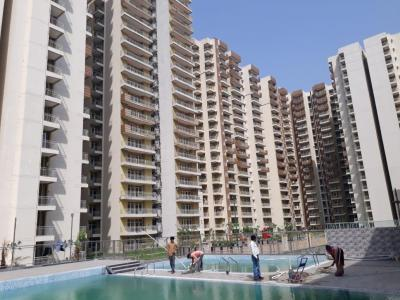 Gallery Cover Image of 850 Sq.ft 3 BHK Independent Floor for buy in Phase 2 for 5000000