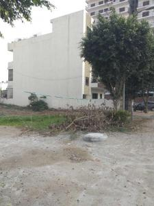 222 Sq.ft Residential Plot for Sale in Sector 42, Faridabad