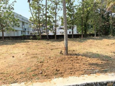 Gallery Cover Image of 2178 Sq.ft Residential Plot for buy in Kangarappady for 1000000