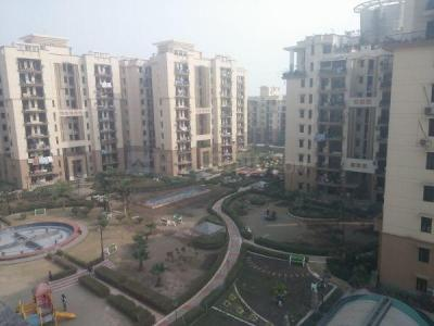 Gallery Cover Image of 1415 Sq.ft 3 BHK Apartment for rent in Sector 93 for 22000