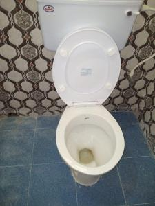 Bathroom Image of Nirala Ladies PG in Garia