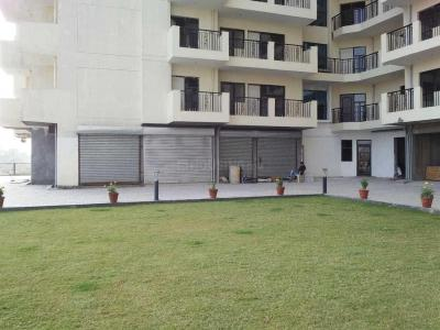Gallery Cover Image of 1015 Sq.ft 2 BHK Apartment for rent in DLF Princeton Estate, DLF Phase 5 for 34000