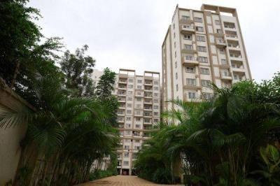 Gallery Cover Image of 1543 Sq.ft 3 BHK Apartment for rent in DSR Waterscape, K Channasandra for 20000
