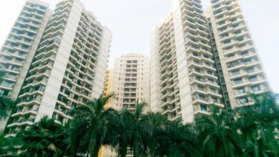 Gallery Cover Image of 985 Sq.ft 2 BHK Apartment for rent in Powai for 54000