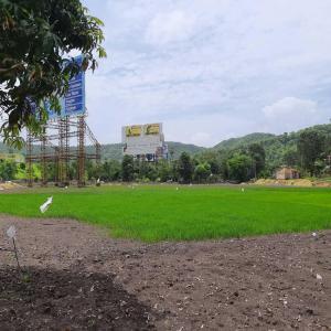 20000 Sq.ft Residential Plot for Sale in Panvel, Navi Mumbai