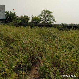 1500 Sq.ft Residential Plot for Sale in Indrapuri, Bhopal