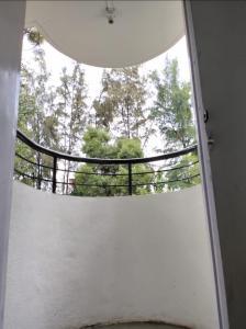 Balcony Image of PG 7218542 Koregaon Park in Koregaon Park