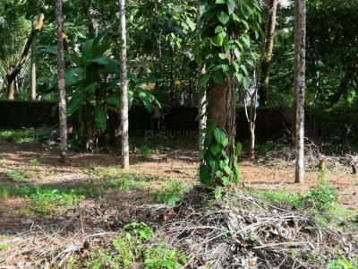 9000 Sq.ft Residential Plot for Sale in Manipal, Manipal