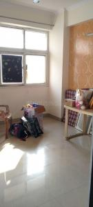 Gallery Cover Image of 875 Sq.ft 2 BHK Apartment for rent in Amrapali Princely Estate, Sector 76 for 15000