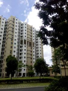 Gallery Cover Image of 680 Sq.ft 2 BHK Apartment for rent in Rajarhat for 9000
