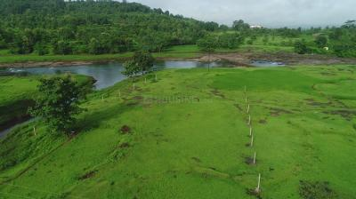 Gallery Cover Image of  Sq.ft Residential Plot for buy in Mangaon Budruk for 1050000