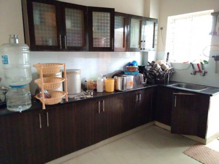 Kitchen Image of 1345 Sq.ft 2 BHK Apartment for rent in Global, RR Nagar for 12000