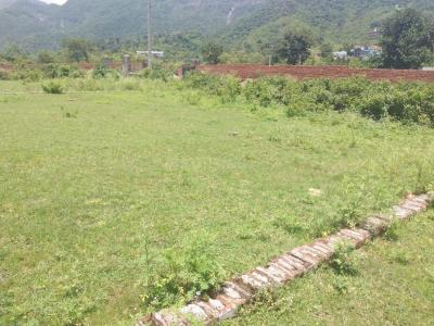 Gallery Cover Image of 200 Sq.ft Residential Plot for buy in Kulhan for 3200000