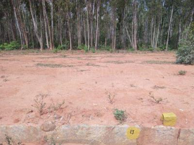 1740 Sq.ft Residential Plot for Sale in Bellahalli, Bangalore