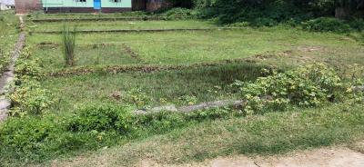 2600 Sq.ft Residential Plot for Sale in Fuljhore, Durgapur