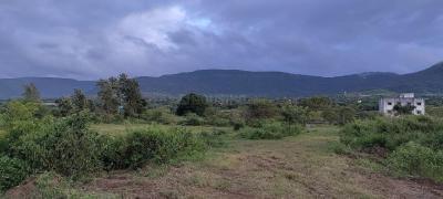 16500 Sq.ft Residential Plot for Sale in Mahalunge, Pune