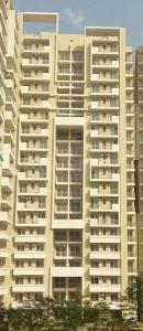 Gallery Cover Image of 1642 Sq.ft 3 BHK Apartment for rent in Sector 37D for 22500