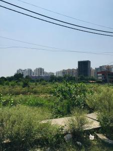 265 Sq.ft Residential Plot for Sale in Sector 75, Faridabad