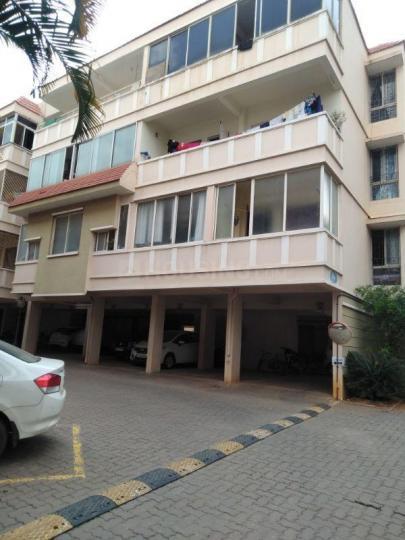 Building Image of PG 5305554 Amrutahalli in Amrutahalli