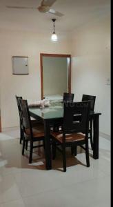 Gallery Cover Image of 1650 Sq.ft 3 BHK Apartment for rent in DDA Flats Vasant Kunj, Vasant Kunj for 50000