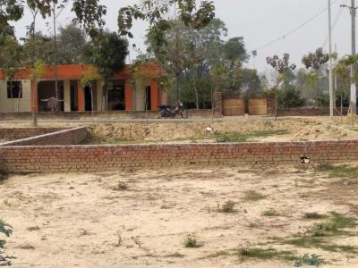 Gallery Cover Image of 1050 Sq.ft Residential Plot for buy in Gomti Nagar for 1573950