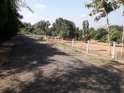 4572 Sq.ft Residential Plot for Sale in Kambala Cheruvu, Rajahmundry
