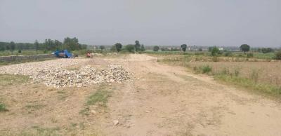 1500 Sq.ft Residential Plot for Sale in Vijay Park, Dehradun