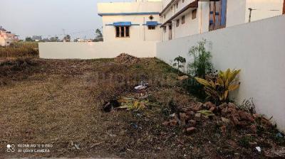 1140 Sq.ft Residential Plot for Sale in Baronwala, Dehradun