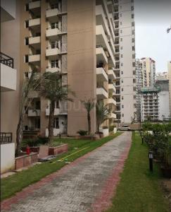 Gallery Cover Image of 1450 Sq.ft 3 BHK Apartment for rent in Noida Extension for 15000