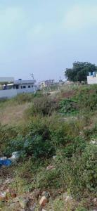 247 Sq.ft Residential Plot for Sale in Jubilee Hills, Hyderabad