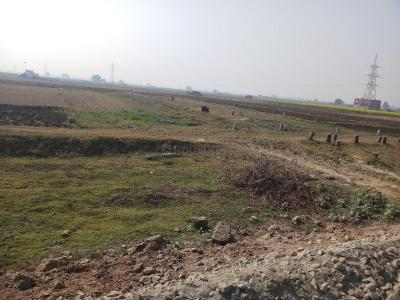 Gallery Cover Image of 1200 Sq.ft Residential Plot for buy in Nayachak for 6000000