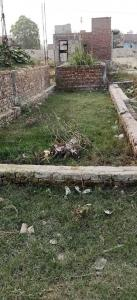 Gallery Cover Image of  Sq.ft Residential Plot for buy in Mehrauli for 500000