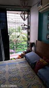 Gallery Cover Image of 1060 Sq.ft 3 BHK Apartment for buy in Serenity Gardens, Vasai East for 7500000