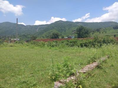 Gallery Cover Image of 125 Sq.ft Residential Plot for buy in Kulhan for 2000000