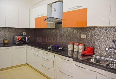 Gallery Cover Image of 1170 Sq.ft 2 BHK Apartment for rent in Vrinda City, Phi IV Greater Noida for 10000