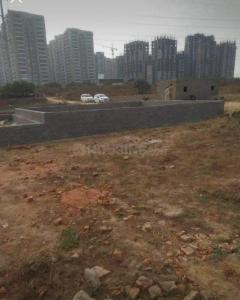 900 Sq.ft Residential Plot for Sale in Sector 143, Noida