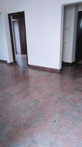 Gallery Cover Image of 1250 Sq.ft 2 BHK Apartment for rent in Brookefield for 20000