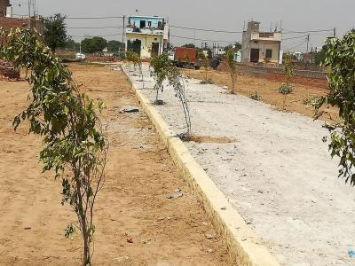 Gallery Cover Image of 1800 Sq.ft Residential Plot for buy in Sector 135 for 2000000