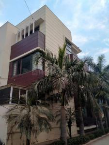Gallery Cover Image of 2844 Sq.ft 5 BHK Independent House for buy in DLF Phase 2 for 58000000