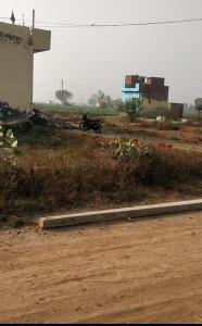 450 Sq.ft Residential Plot for Sale in Bhopani, Faridabad