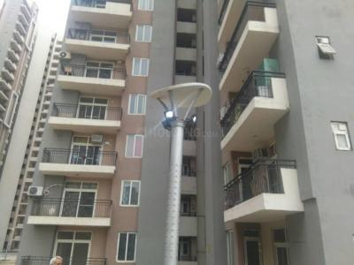 Gallery Cover Image of 1592 Sq.ft 3 BHK Apartment for rent in Sector 110 for 18000
