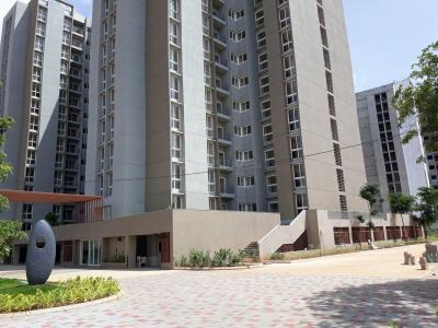 Gallery Cover Image of 1157 Sq.ft 3 BHK Apartment for rent in Assetz 63 Degree East (Tower B), Chikkakannalli for 27000